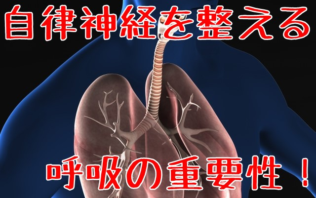 自律神経を整える呼吸の重要性